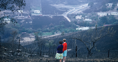 Bushfire survivors asked to share their stories