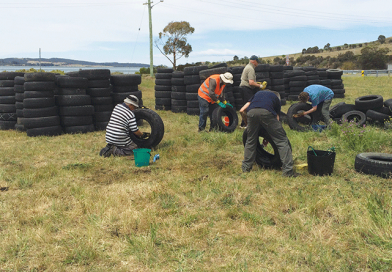 Volunteers collect seven tonnes of abandoned tyres