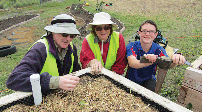 Green Thumbs Up For Clarendon Vale Community Garden